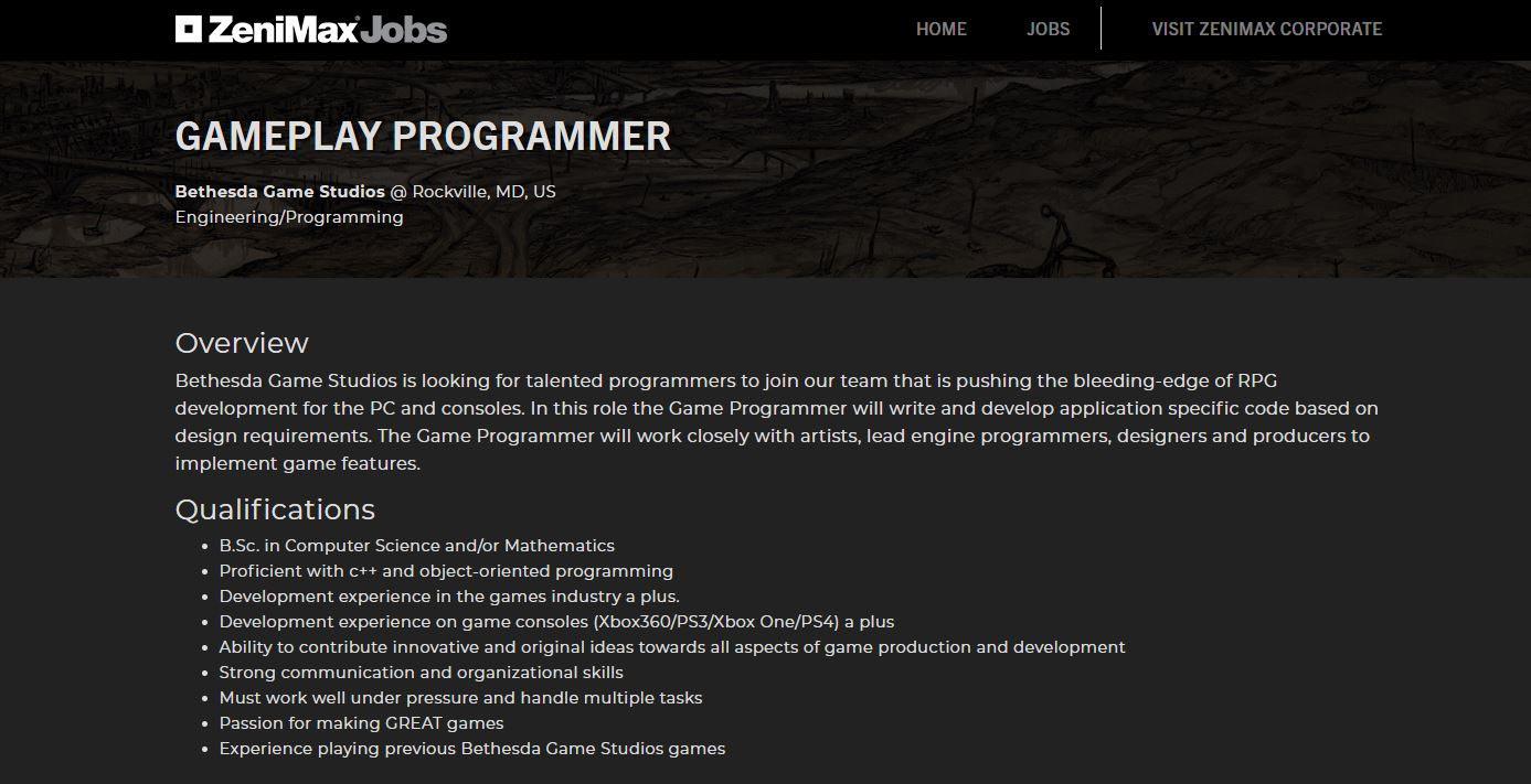 Zenimax Programmer Job